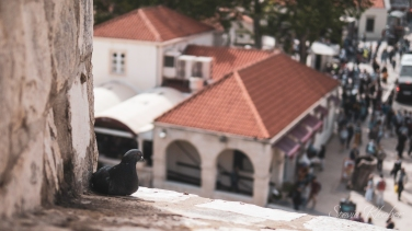 SKLOE-Dubrovnik-1004159